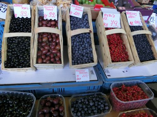 fruits of the forest market berries