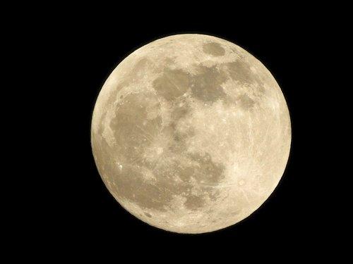 full moon  night photograph  luna