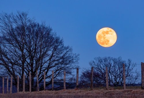 full moon  super moon  moon