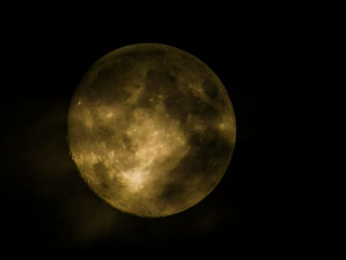 full moon night moon