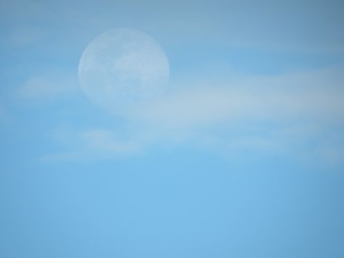 Full Moon In Daylight