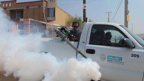 fumigation street pesticide