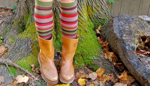 fun socks boots fall