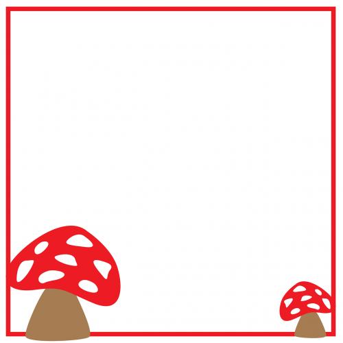 fungus mushrooms tree fungus