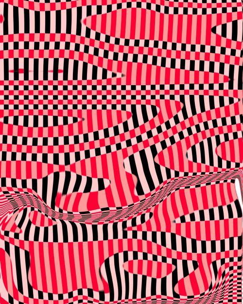 Funky Zebra Stripes