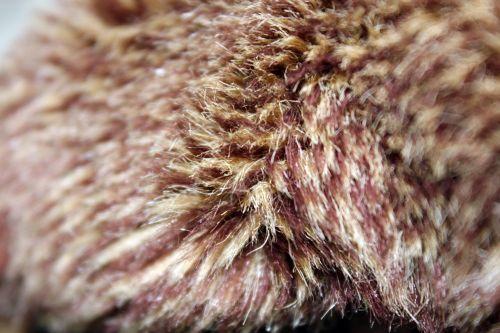 Fur Background 5