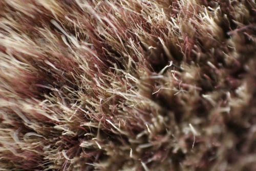 Fur Background 6