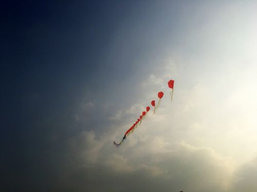 fy red kite