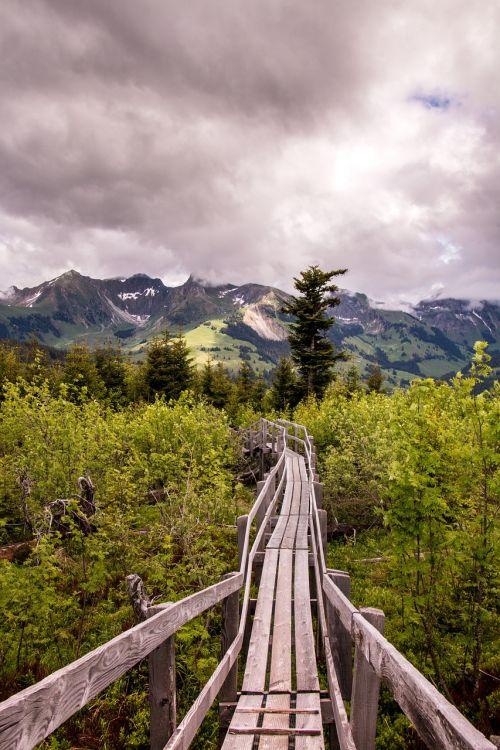 gäggersteg nature reserve lonely