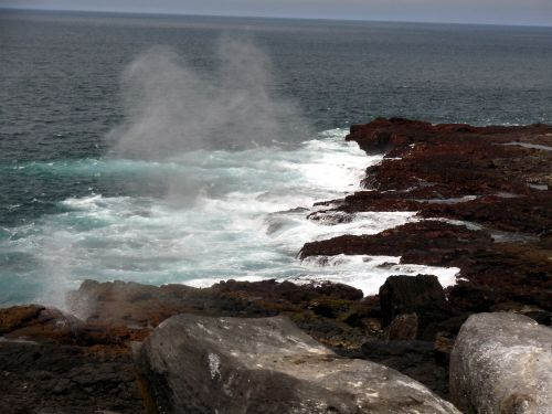 Galapagos Beach Texture