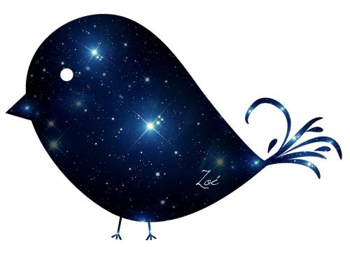 galaxy birds ave