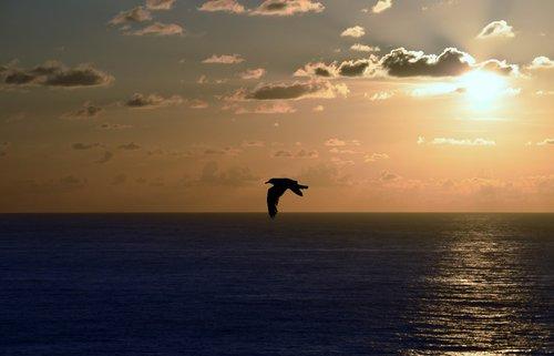 galicia  nature  sunset