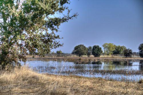 Galt Wetlands