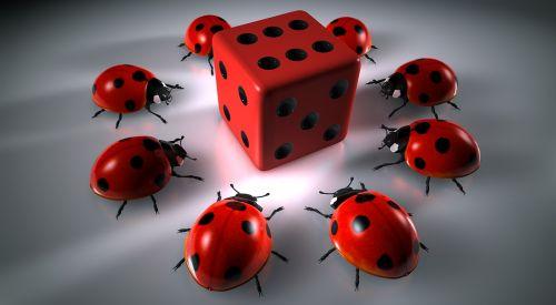 gamers round gambling cube