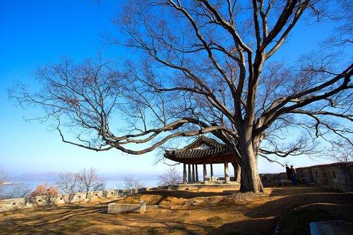 ganghwado  year already  republic of korea