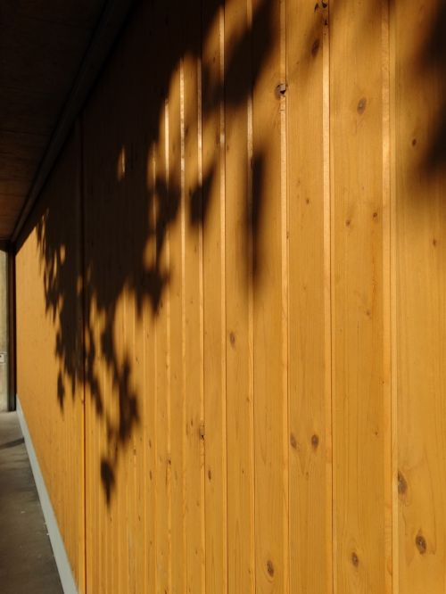 garage door wooden gate lichtspiel