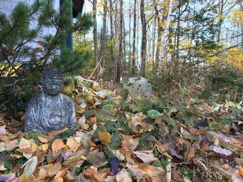 garden statue buddha
