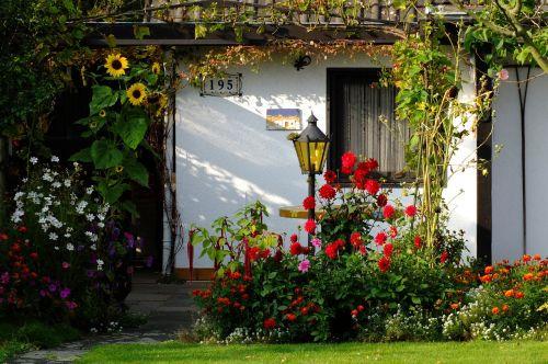 garden flowers home