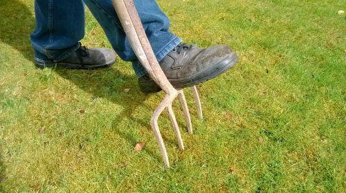 garden fork lawn