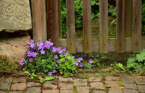 garden garden fence fence