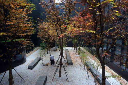 garden sweep the floor autumn
