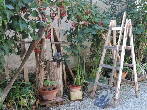 garden ladder composition