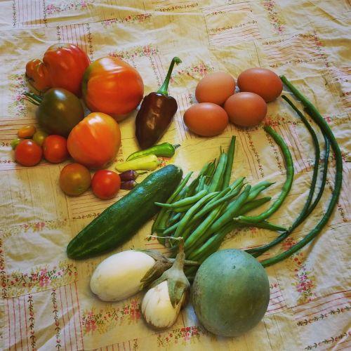 garden vegetables heirloom
