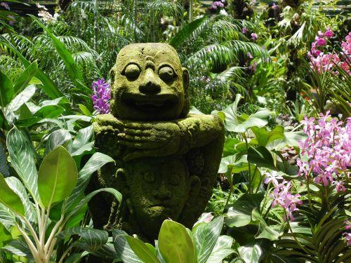 garden flowers botanical garden