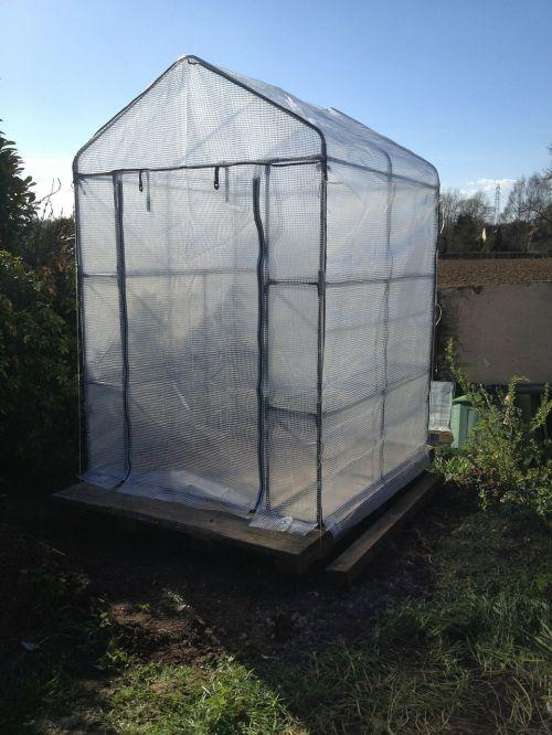 garden greenhouse geranium greenhouse