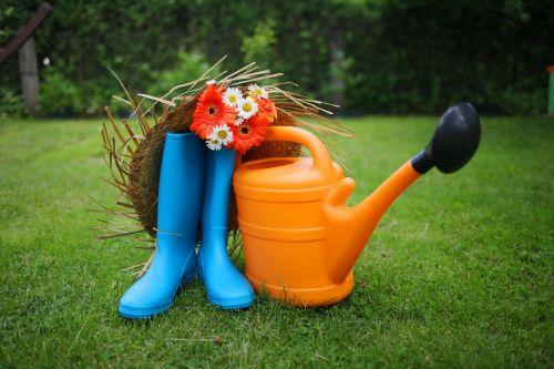 garden garden tools gerbera