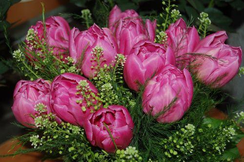 sodas, gėlė, lapai, gamta, gėlių puokštė, gėlių kompozicija, gėlės, gėlių, gėlių kompozicijos, be honoraro mokesčio