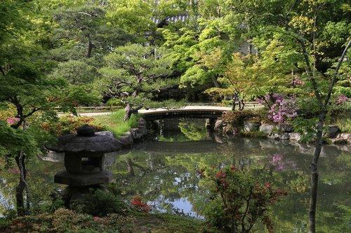 garden  japanese  reflection