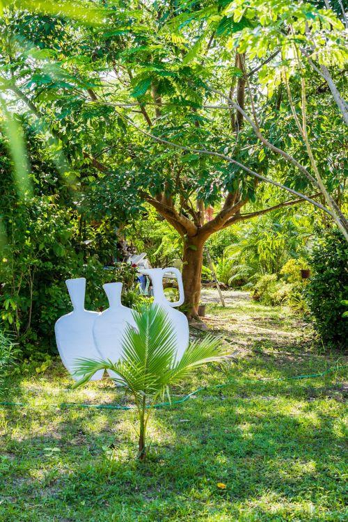 garden nature horticulture