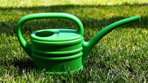 garden  casting  watering can