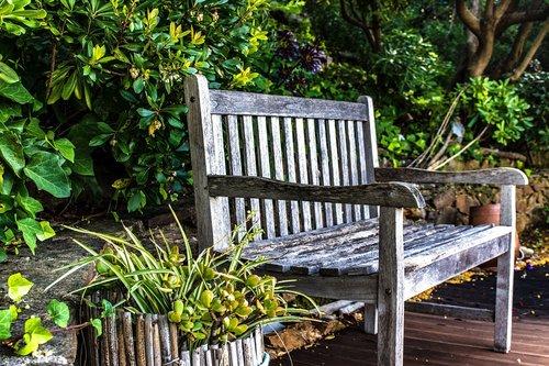 garden  bench  greenery