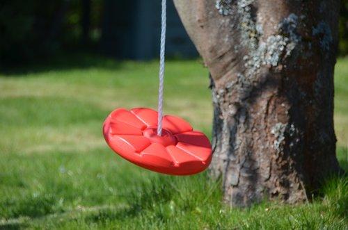 garden  swing  tree