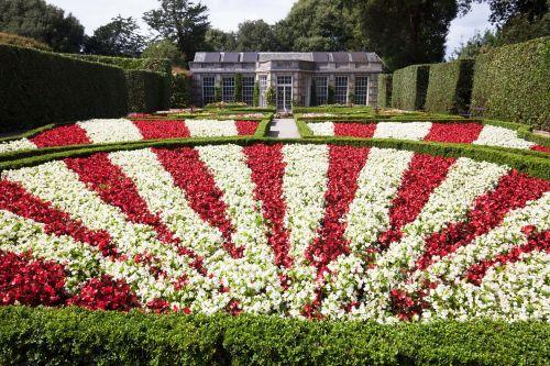 garden rondelle flowers