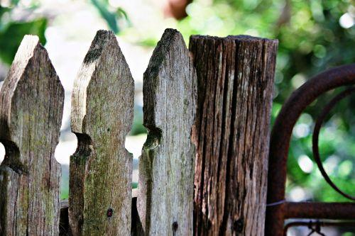 garden fence timber