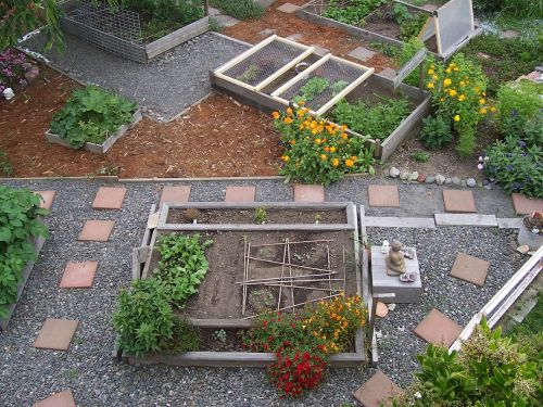 garden urban farming organic