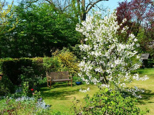 garden spring nature