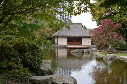 garden zen japanese