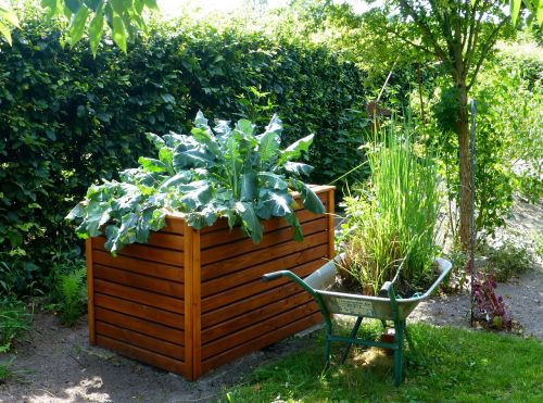 garden raised bed kohl