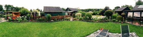 garden allotment grass