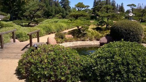 sodas,tiltas,gamta,žalias,lauke,sodininkystė,japoniškas sodas,vaizdingas,zen sodas,atspindys