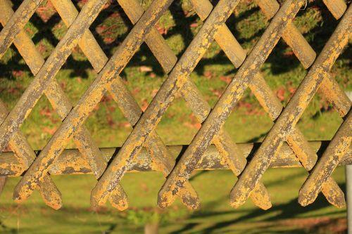 garden fence sun game mossy