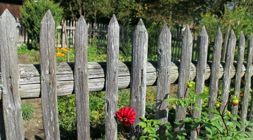 garden fence wood fence paling