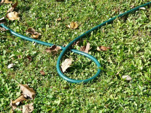 garden hose hose irrigation