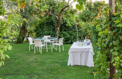 garden party tables nature
