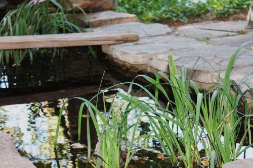 garden pond pond garden