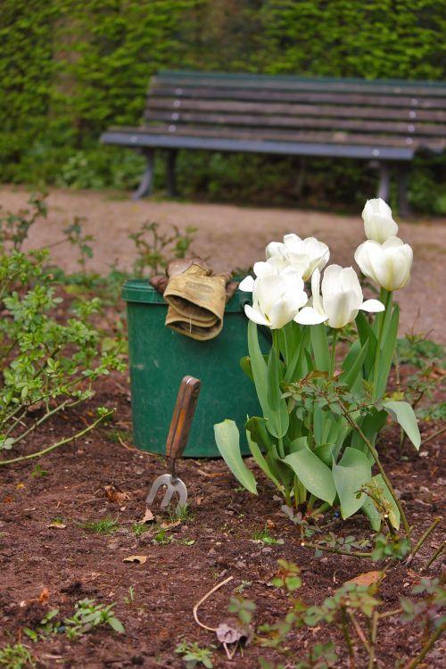 gardening landscape gardener gardener